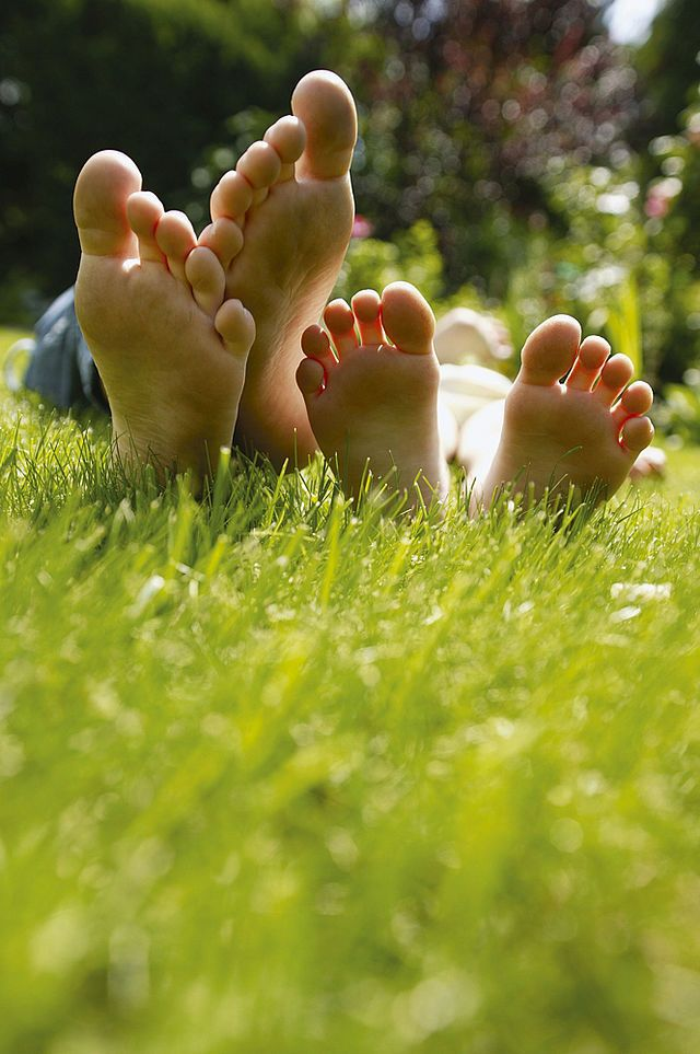 Diy Academy Rasen Saen Rasen Rasenpflege Im Fruhjahr Rasenpflege