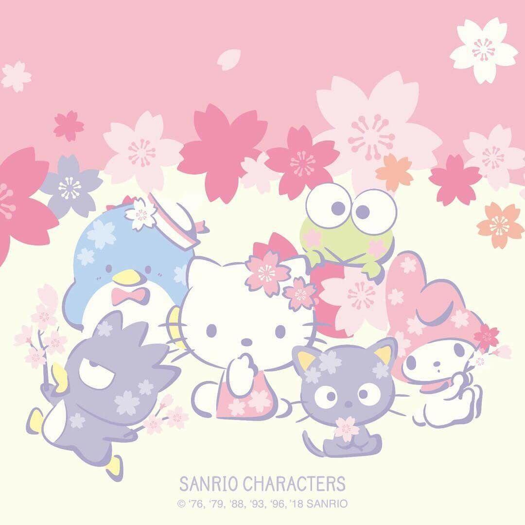 Happy Cherry Blossom Season From Hello Kitty And Friends Hello
