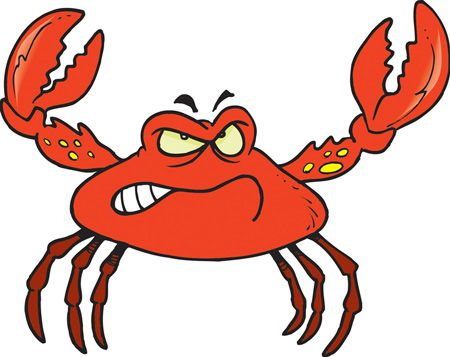 funny pictures of crabs funny crab cartoon funny animal misc rh pinterest com cartoon hermit crab images cartoon blue crab images