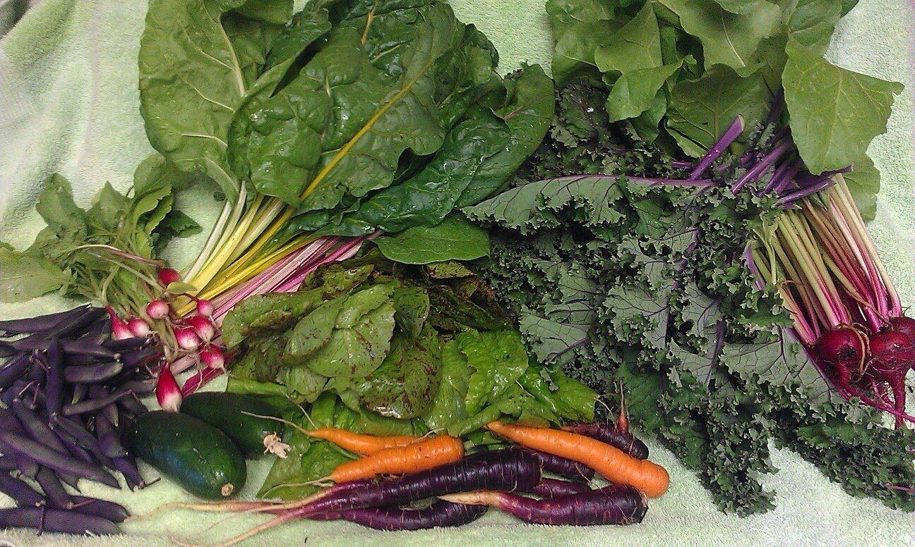 Assorted veggies 2013