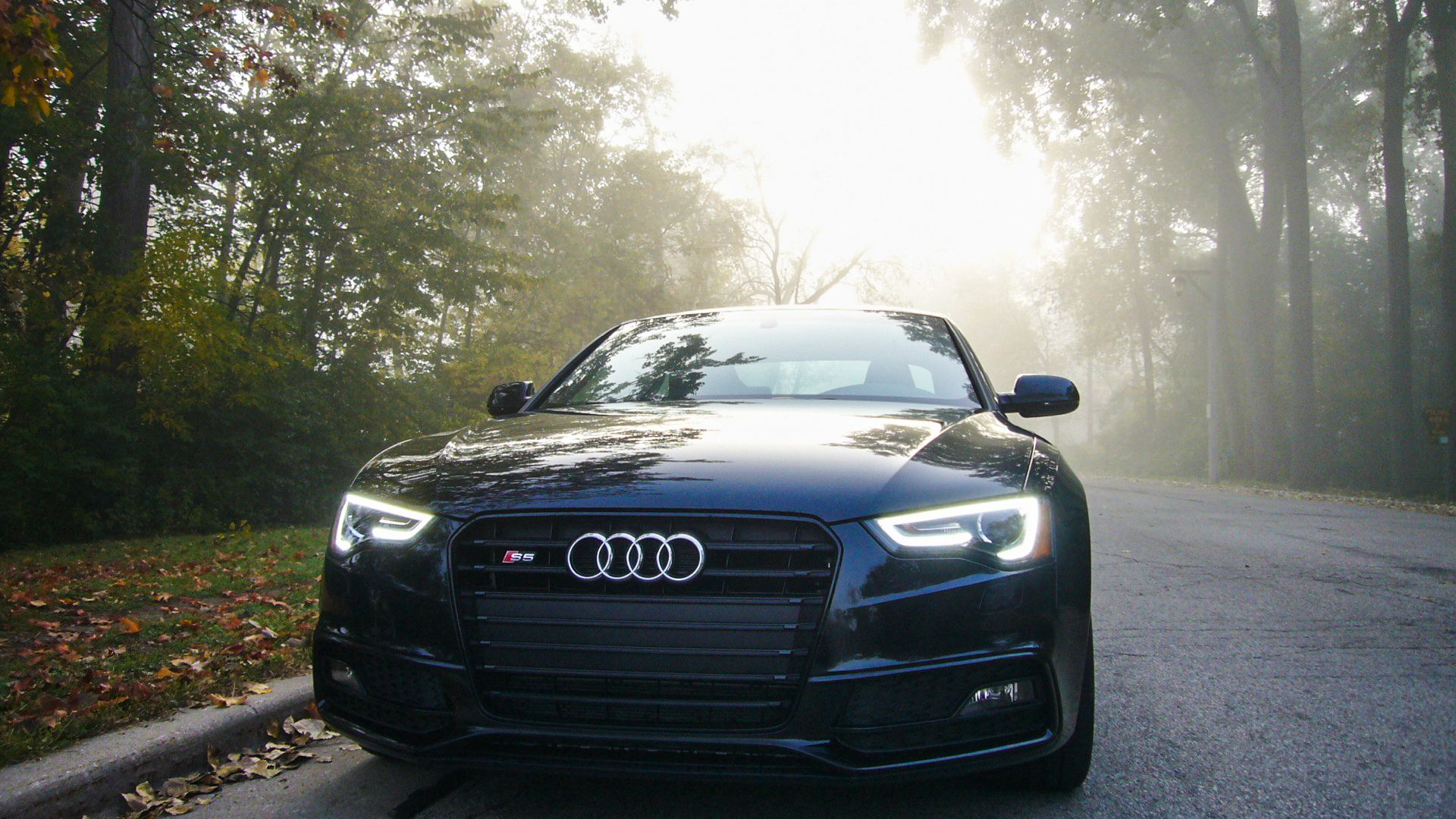 By Robert S Schultz Like The Early Morning Mists Of Autumn Black Optic Package Audis Are Stealthily Materializing At Dealerships They R Audi S4 Audi Audi S5