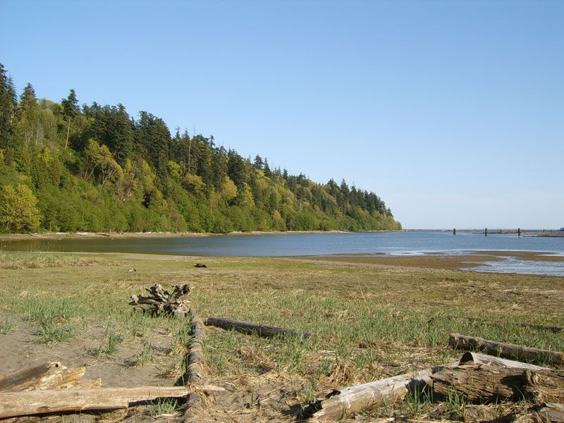 Wreck Beach, Bc With Ubc Area And Vancouver, Canada Stock