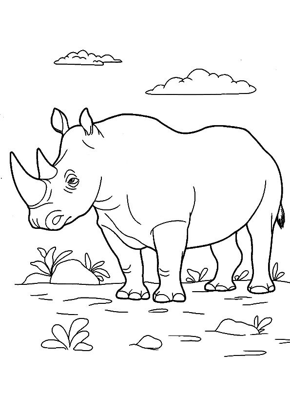 The Rinoceronte Animal Coloring Pages Farm Animal Coloring