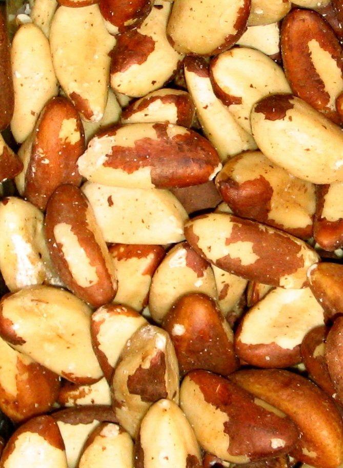 Aphrodisiakum Paranüsse: gesund und fit mit Selenium http://supergesundelebensmittel.de/aphrodisiakum-paranusse-gesund-und-fit-mit-selenium/
