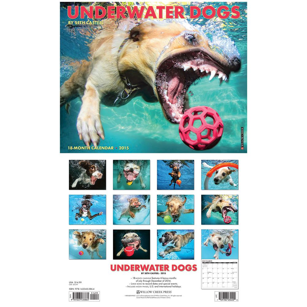 Underwater Dogs 2015 Calendar Underwater Dogs Animal Rescue Site Dogs