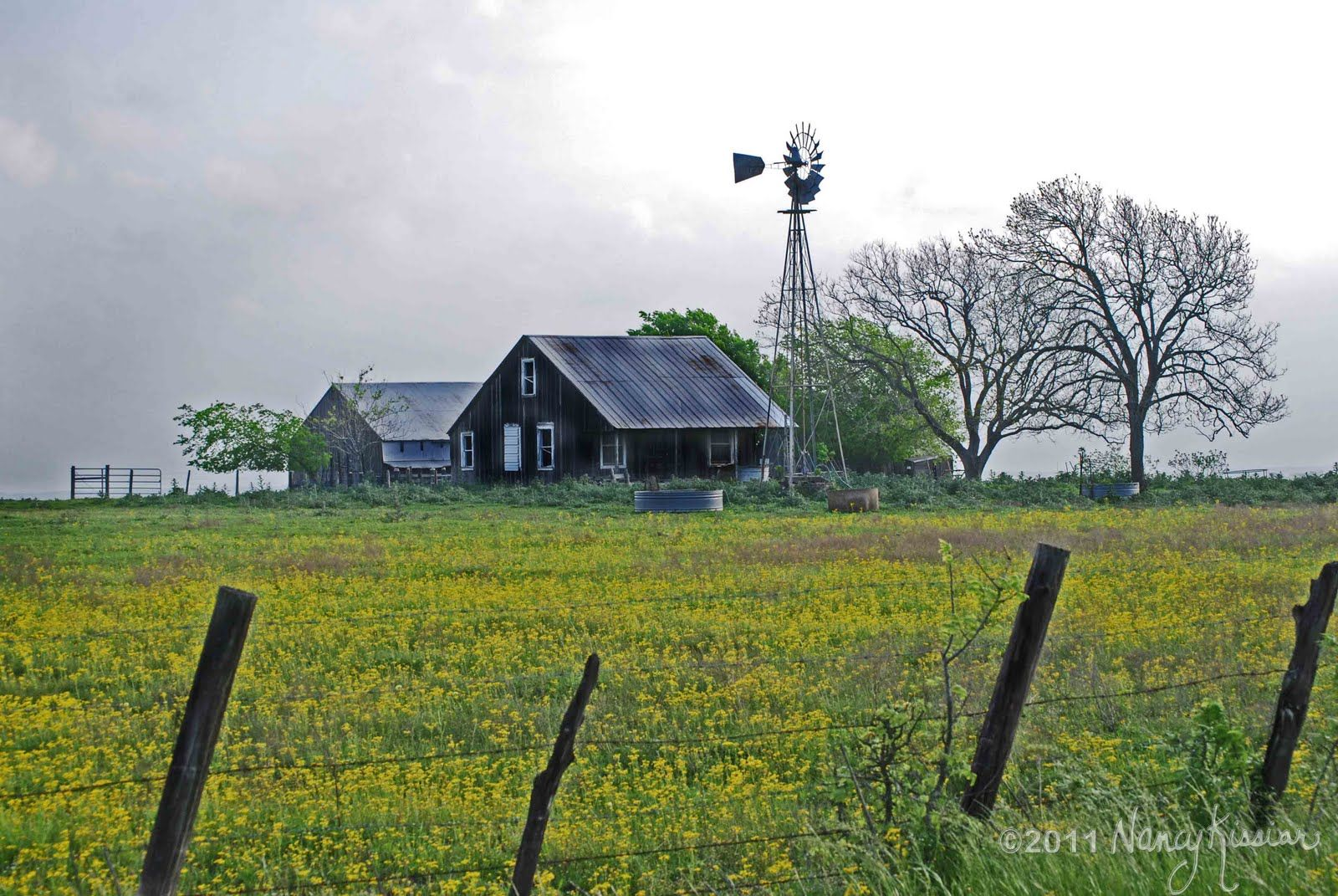 Old Barns And Windmills