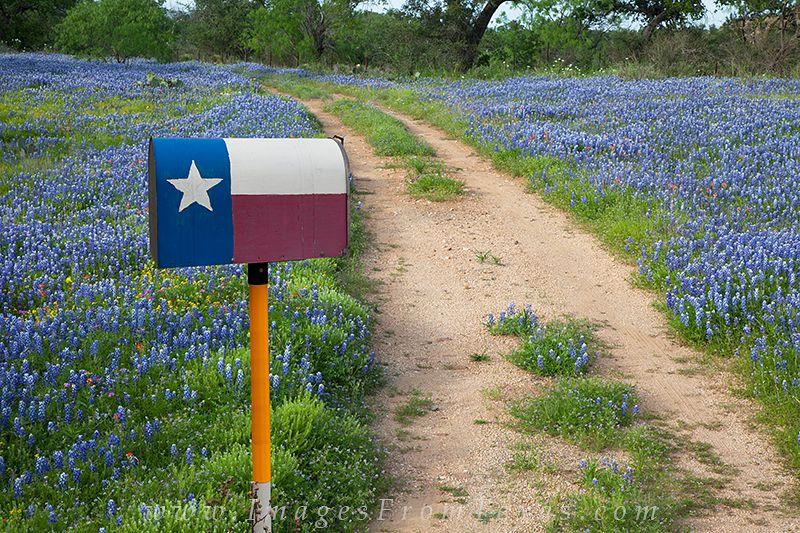 A Mailbox A Texas Flag And Bluebonnets Texas Hill Country Texas Decor Texas Hill Country Blue Bonnets
