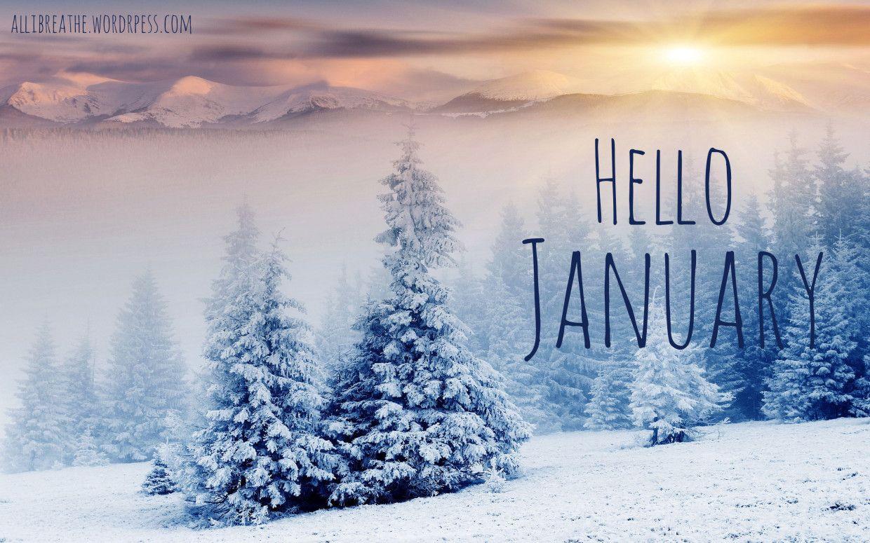 (Hello 2015) Hello January!