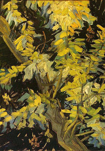 Vincent Van Gogh:  Blossoming Acacia Branches (1890)