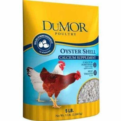Dumor Oyster Shell 5 Lb Oysters Chicken Feed Oyster Shell