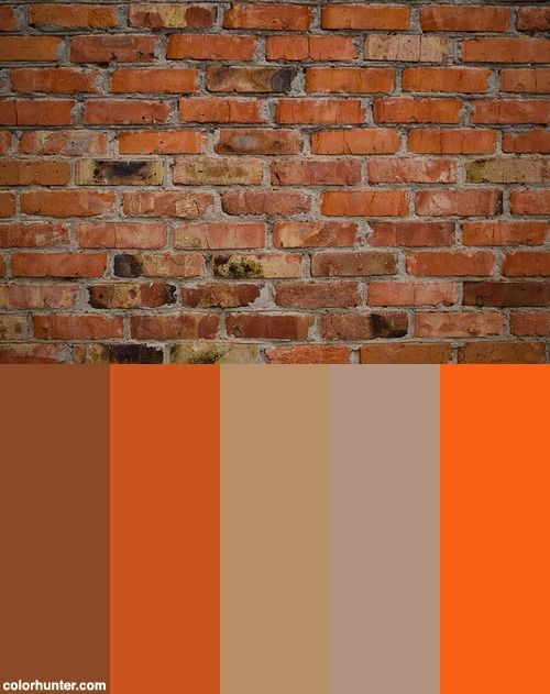 Old Brick Wall Color Scheme With