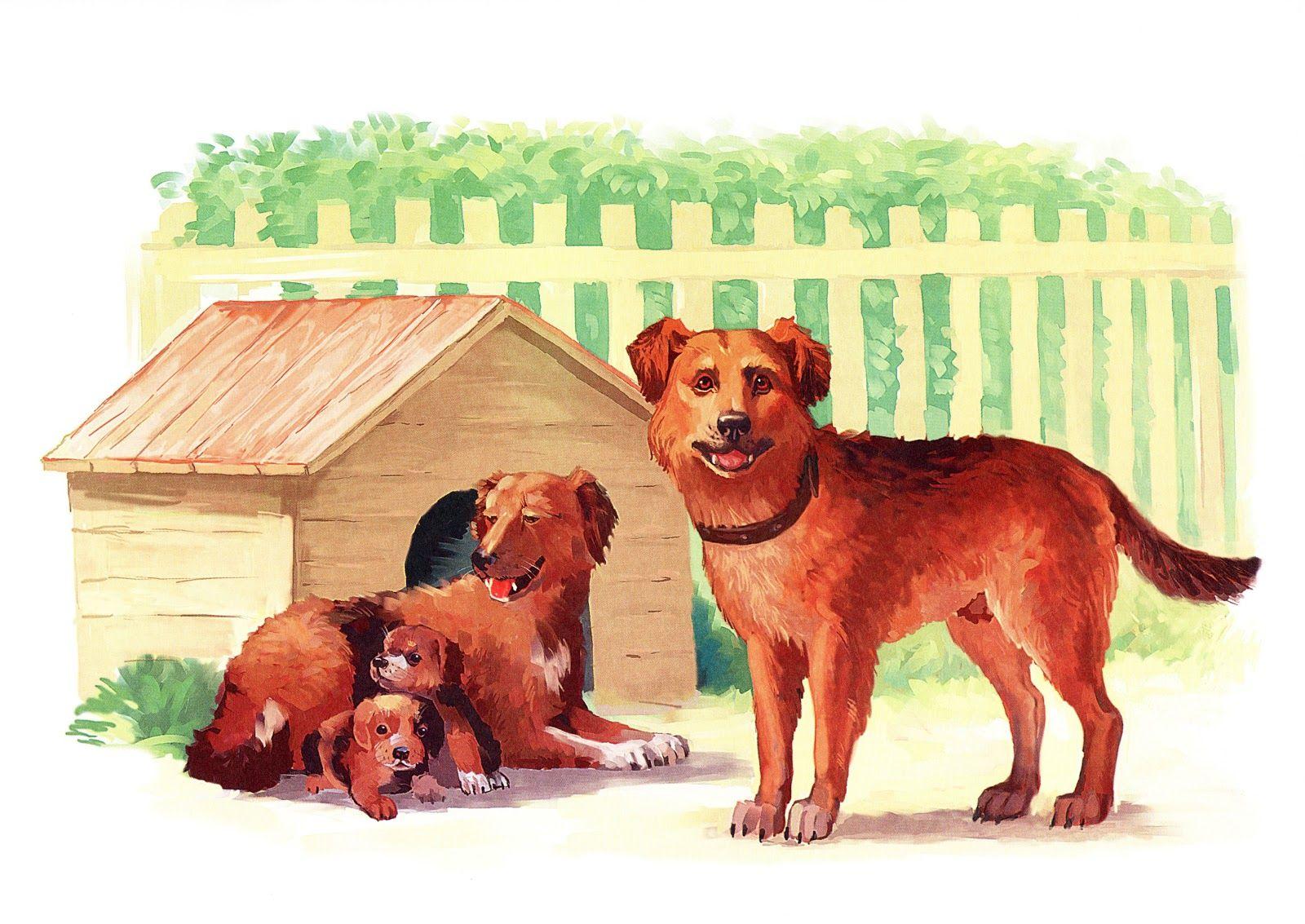 Сюжетная картинка щенок