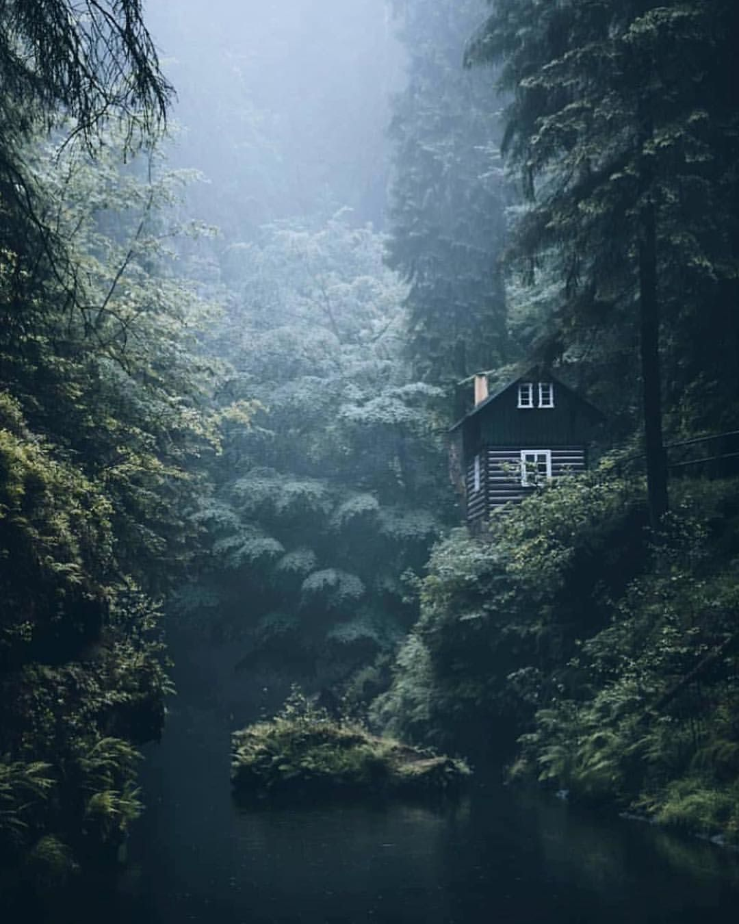 Pictures Of Cabin In The Woods