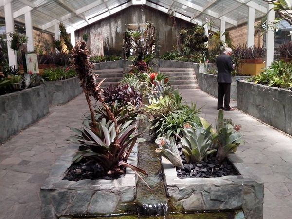 Jardin Botánico José Celestino Mutis en Bogota | ARTE en ...