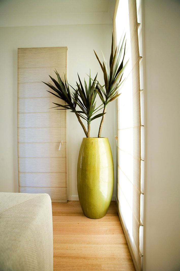 Marvelous This Interior Plant Display Fills Up The Empty Corner With An Arty Look As  Well As