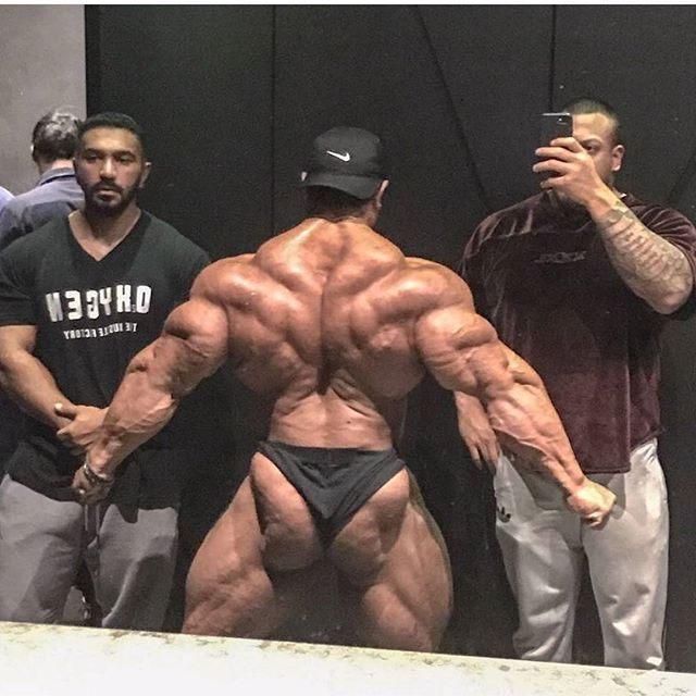 446cfa7e Roelly Winklaar Bodybuilding Motivation Quotes, Fitness Motivation, Gym  Fitness, Best Bodybuilder, Mma