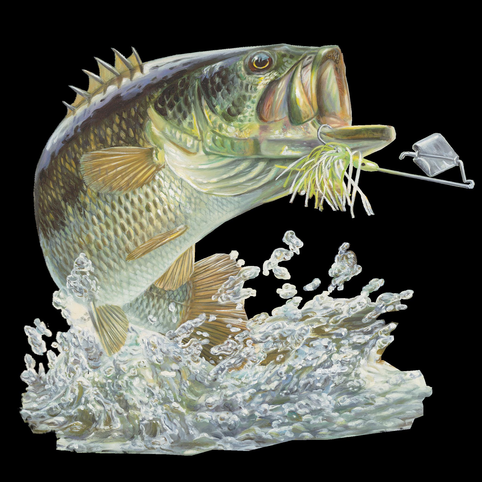 Bass fishing sticker buzzbait fishing apparel fishing for Bass fishing hats