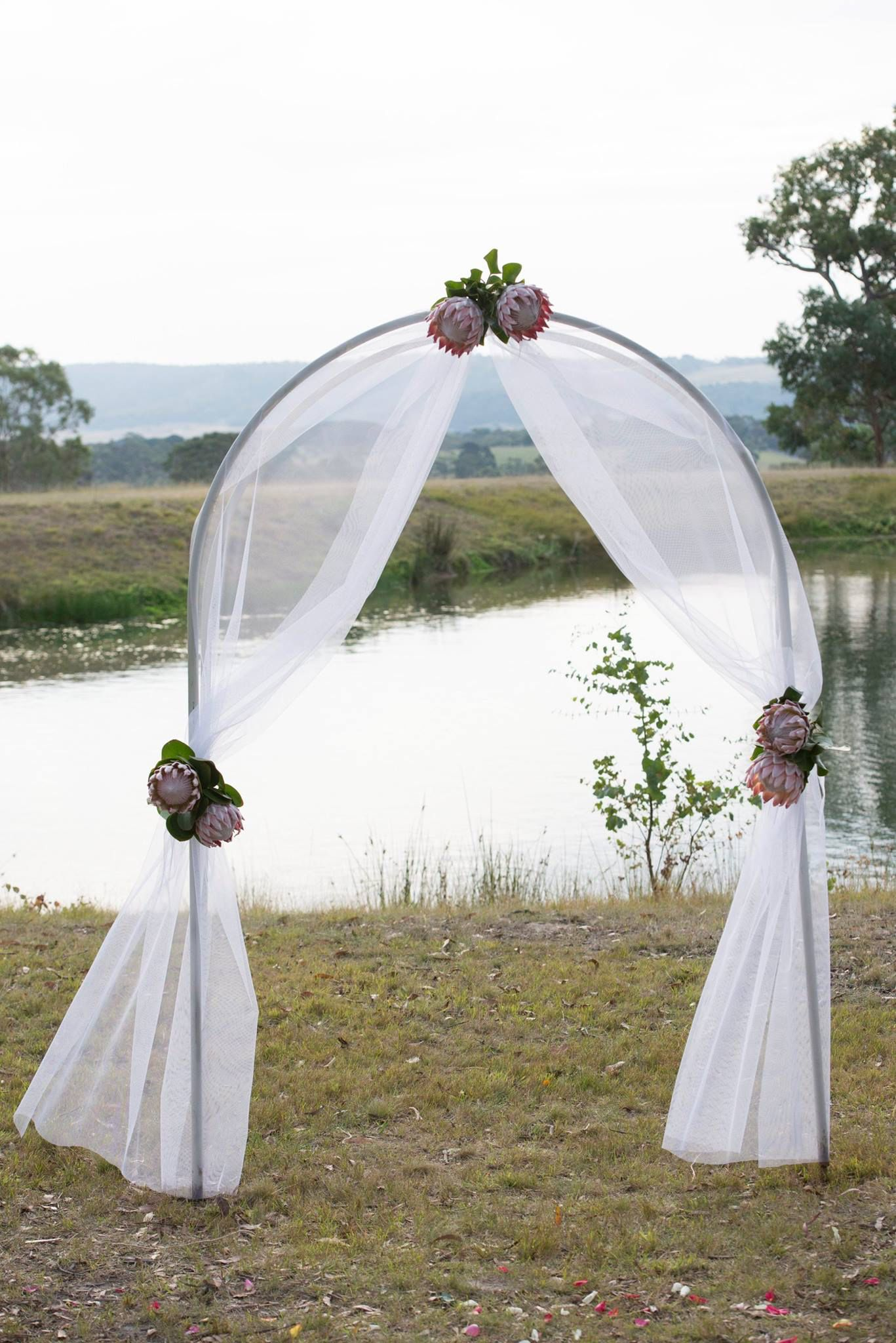 Gorgeous Ceremony Arch Decorated With Tulle And King Proteas Weddings At Peninsula Wild Flower