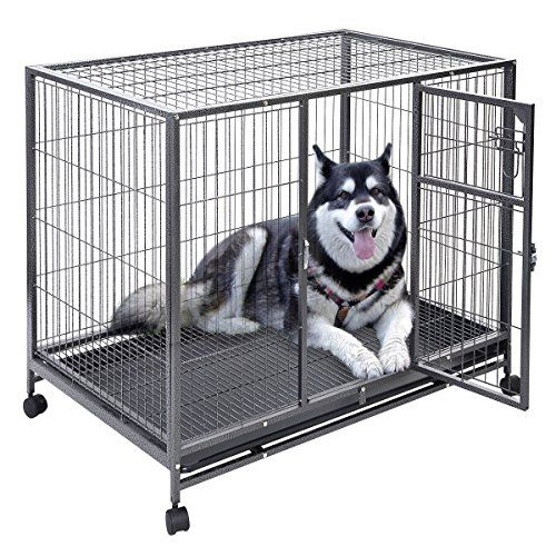 Tips For Crate Training Puppies At Night To Stop Night Time Being