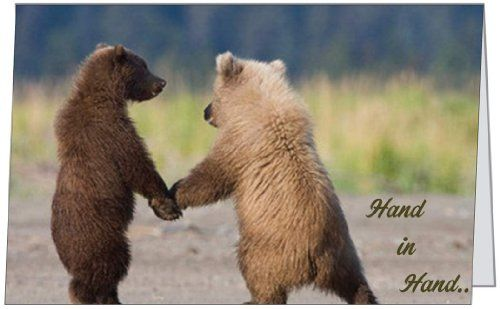 Anniversary love spouse wife husband wedding congratulations bears