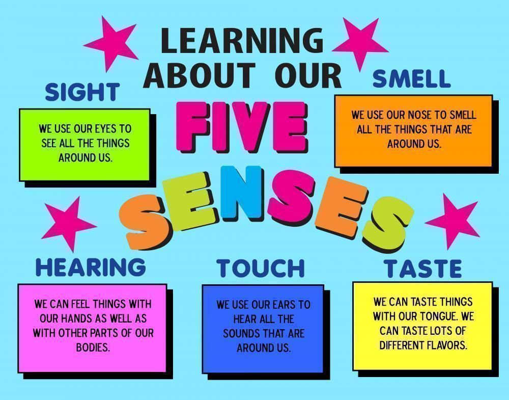 five sense clipart