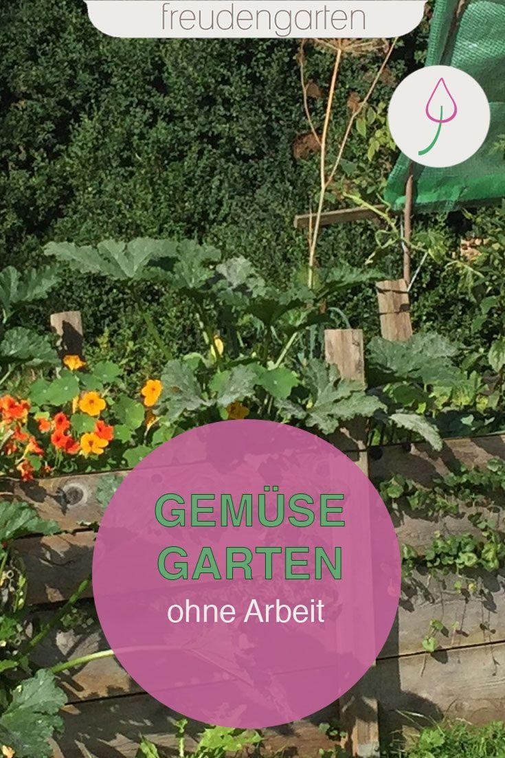 Einen Pflegeleichten Gemusegarten Anlegen So Gelingt S Garten Pflegeleichter Garten Und Gemusegarten Anlegen