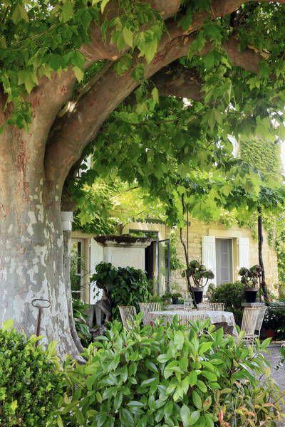 miniature Jardin champêtre, Monteux, ConceptuELLES Paysage ...