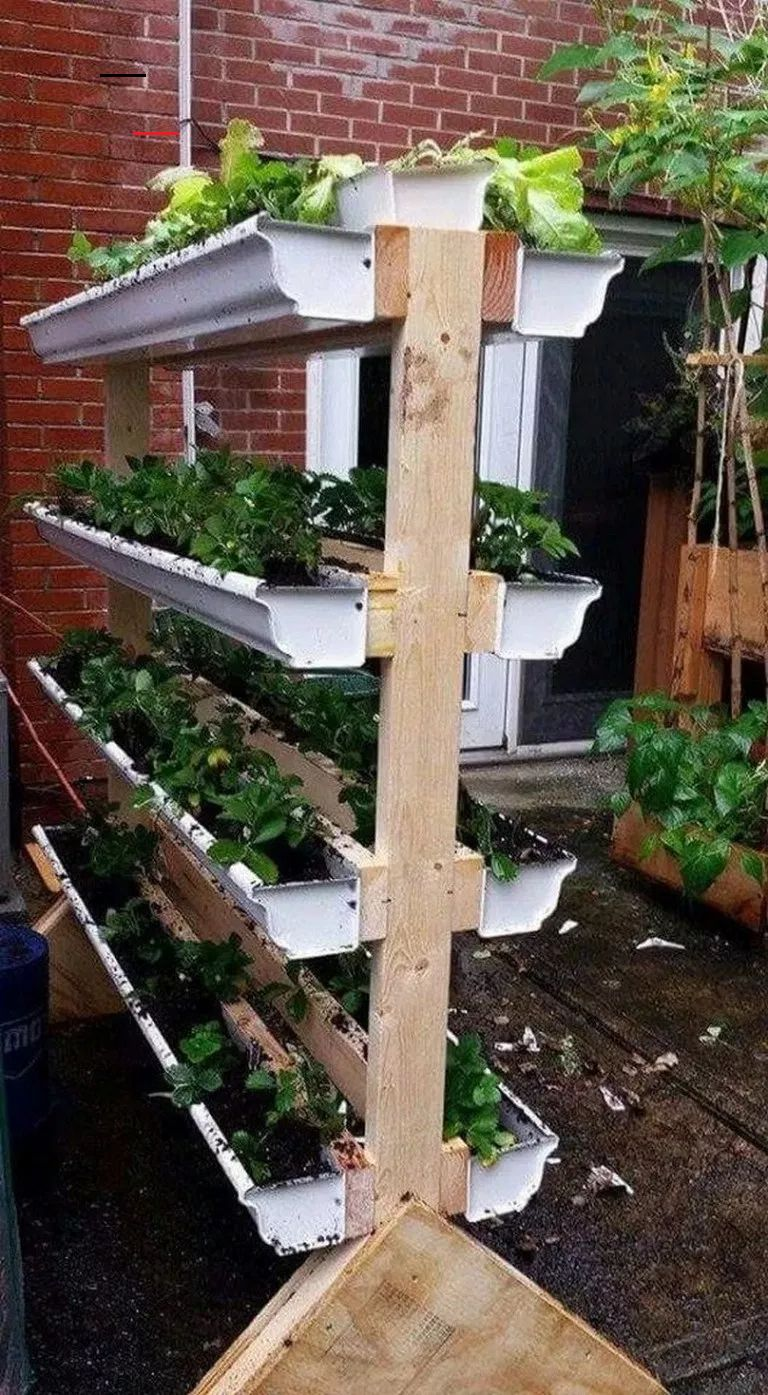 outdoorflowers in 2020 Vegetable garden diy, Vertical
