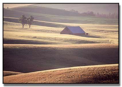 """Palouse Farm"" Alison Meyer Photography"