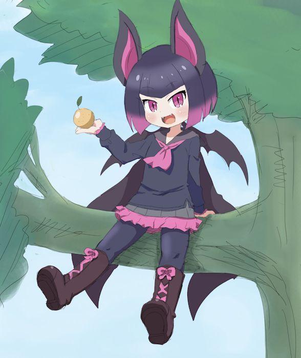 Common Vampire Bat Kemono Friends Anime Vampire Bat