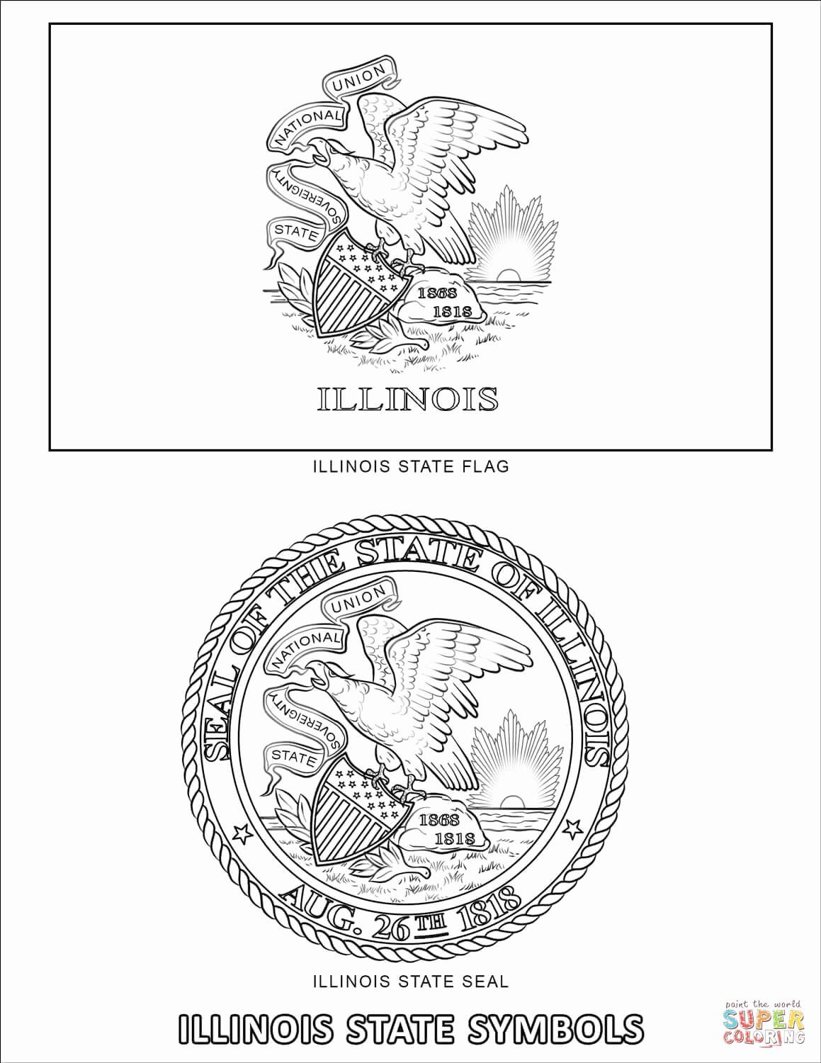 Minnesota State Flag Coloring Page In