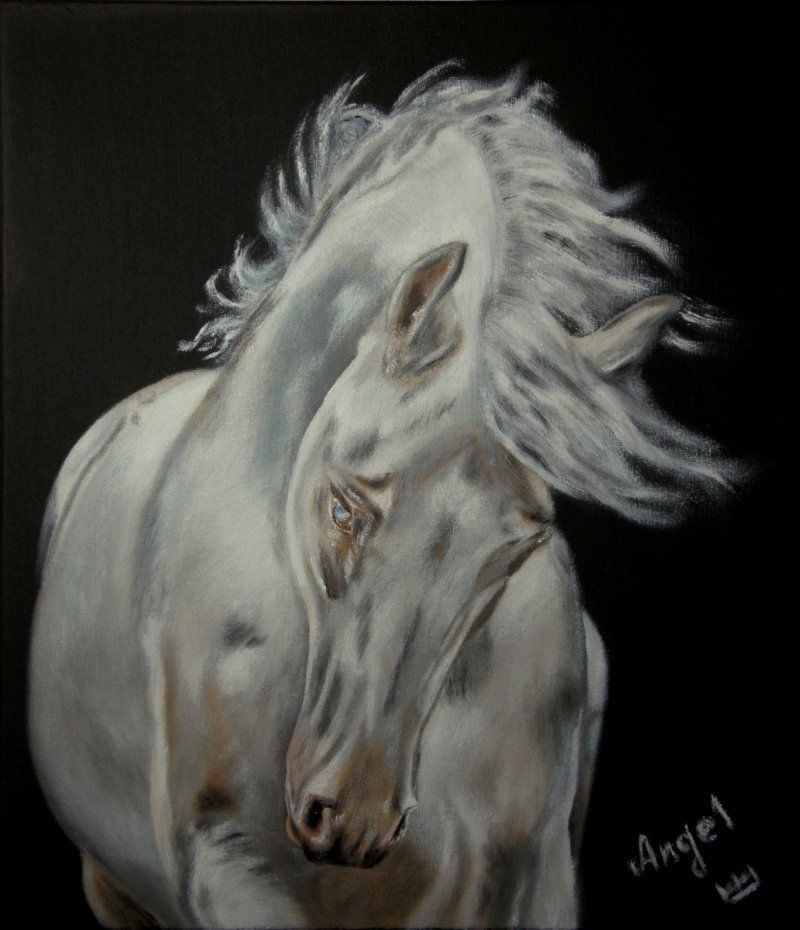 управлении лошади на зеркале картинки старой доброй традиции