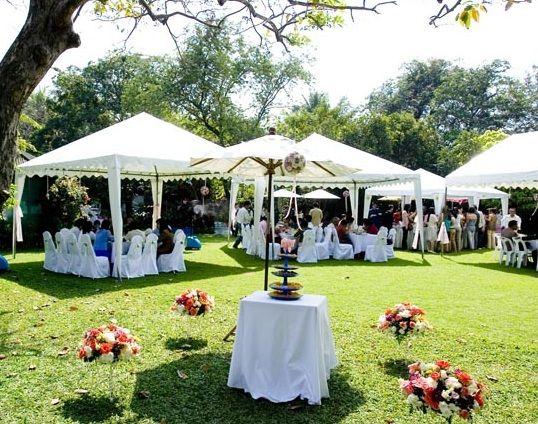 Carpas para comunion ideas para fiestas pinterest - Carpas para patios ...