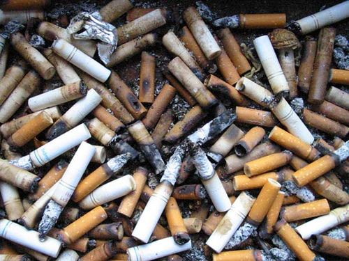 https://flic.kr/p/omyi8 | Cigarettes | A disgusting collection of cigarette butts provided by my cancer-prone roommates, Ottawa.