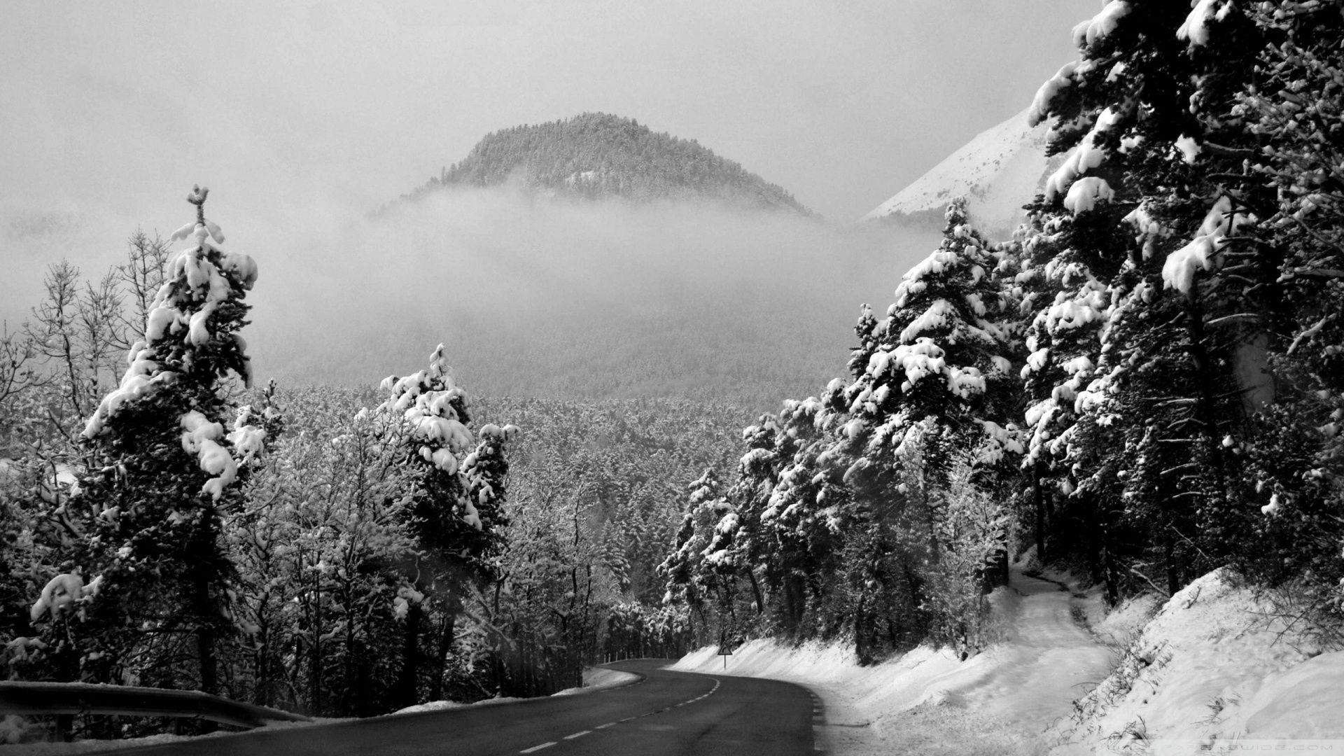 Winter Road Wallpaper Free Download