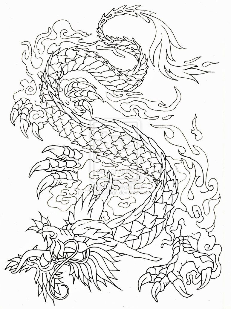 Line Drawing Dragon Tattoo : Dragon design outline by tattoo on