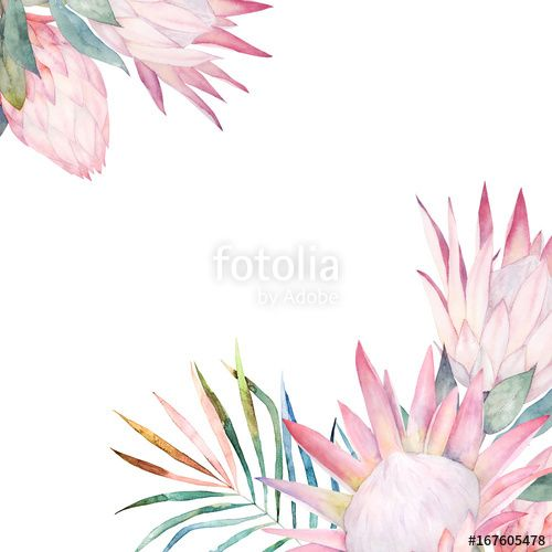 Baixe A Foto Royalty Free Floral Card With Protea Watercolor Template For Wedding Invitations Protea Wedding Wedding Stamp Design Wedding Stationary Design