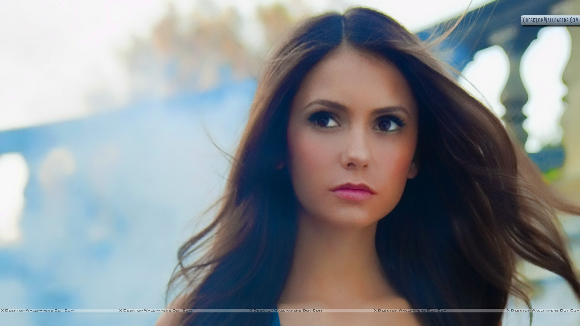 The Young And Gorgeous Nina Dobrev Wallpapers