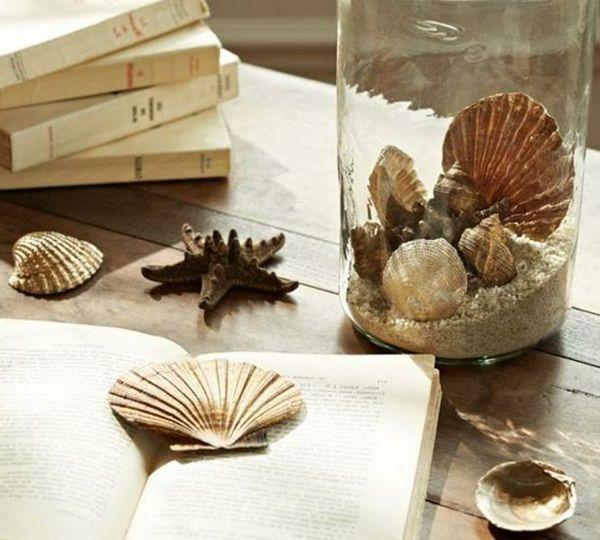 decorative shells