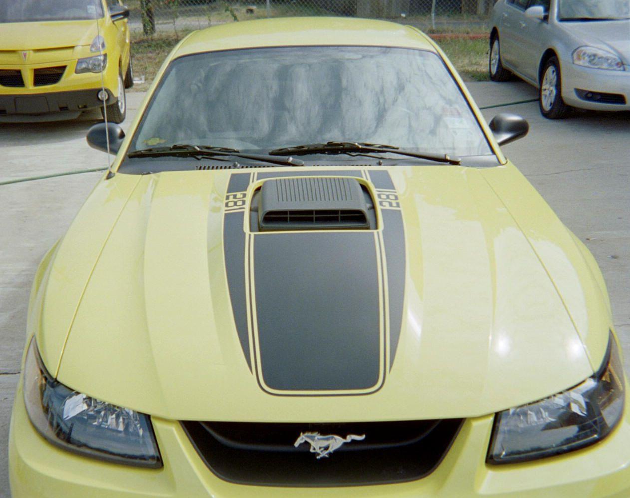 Graphic Express Customer Cliff Payne 2003 Mustang Mach 1 Autos Und Motorräder Autos