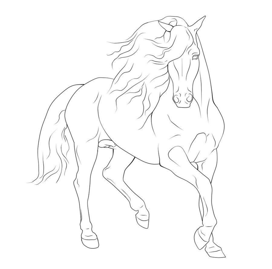 gaited horse lineart Google Search