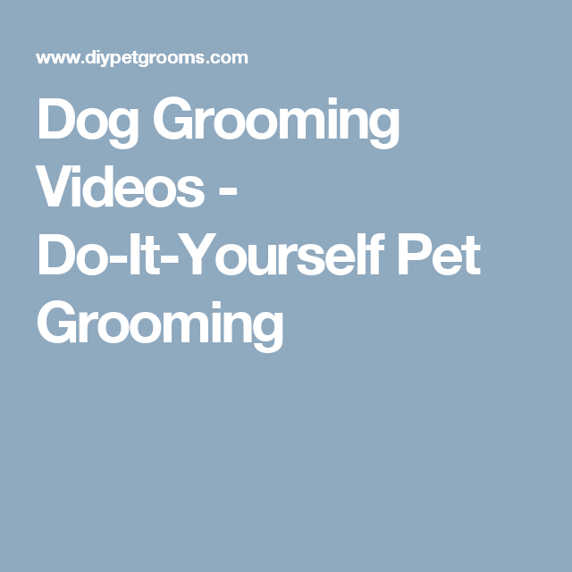 Dog grooming videos do it yourself pet grooming haircuts dog grooming videos do it yourself pet grooming solutioingenieria Choice Image