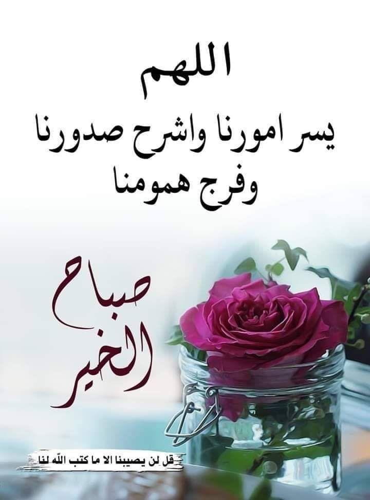 صباح الخير Good Morning Arabic Beautiful Morning Messages Good Morning Flowers