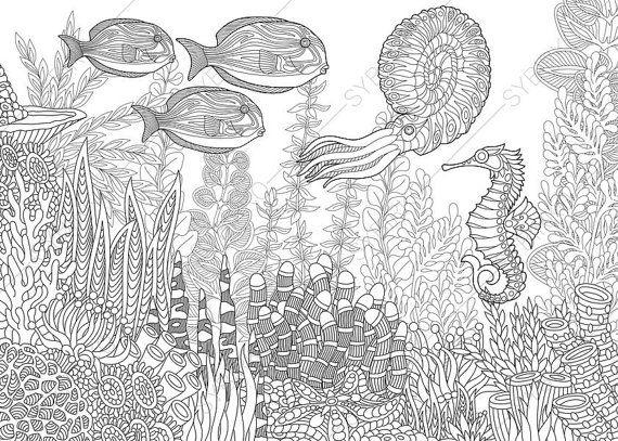 Adult Coloring Pages. Nautilus, Seahorse, Fish. Zentangle Doodle ...