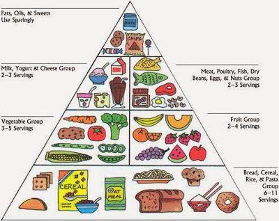 25+ Impressive food pyramid worksheet Awesome