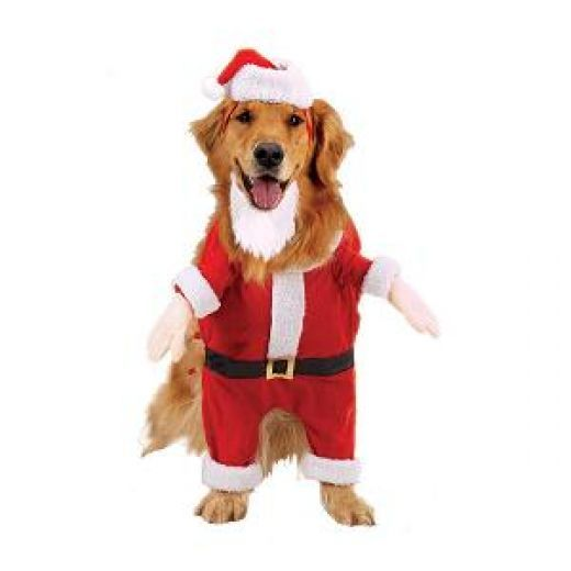 Dog Santa Costume - Santa Claus Costumes Awesome Christmas Costumes Dog Costumes