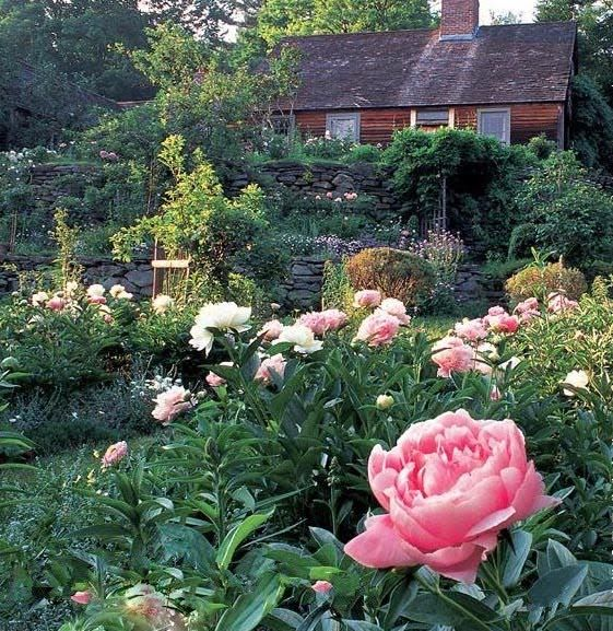 Grace Bonney on (With images) Beautiful gardens, Garden
