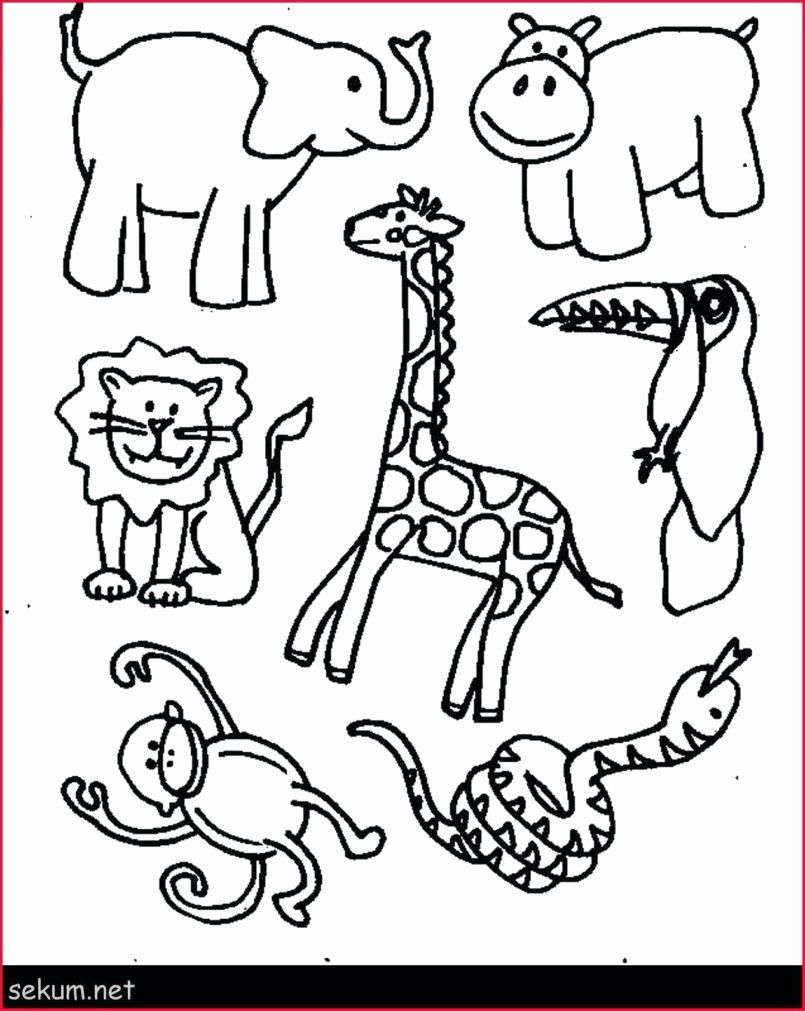 Pin On Popular Printable Coloring Pages