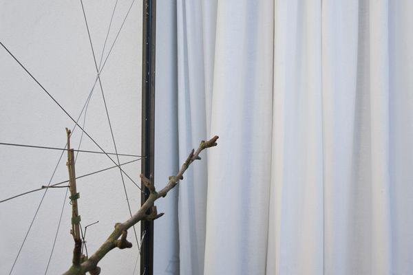 Dekoration vor edlem Vorhang