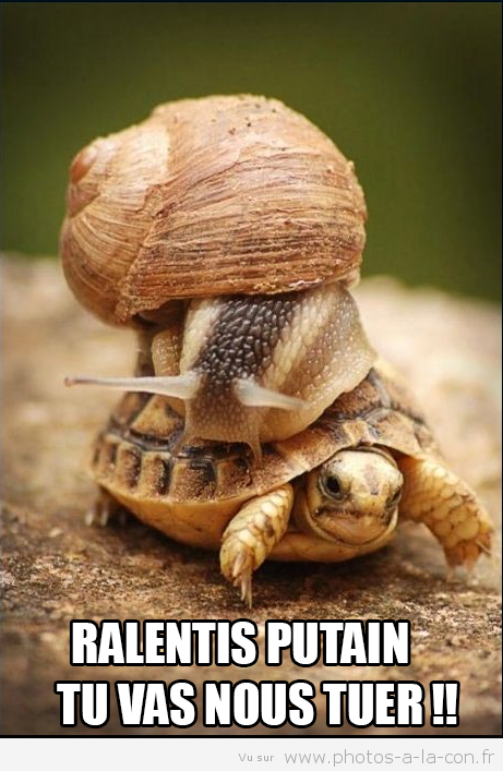 histoire drole escargot
